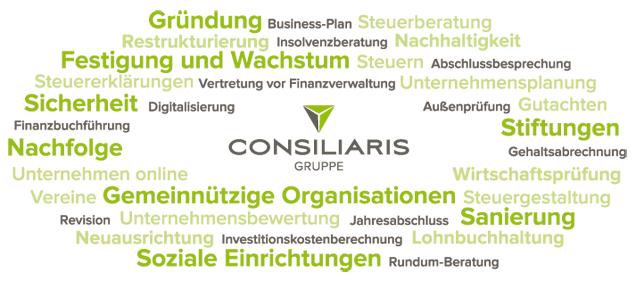 Leistungen und Themen der CONSILIARIS Gruppe
